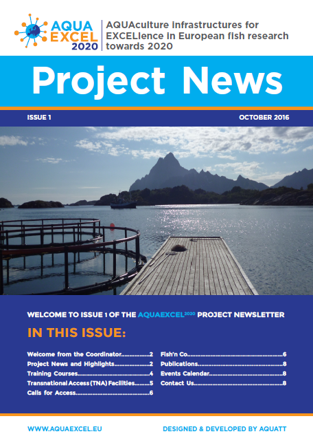newsletter 1 frontpage