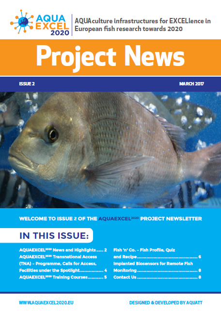 newsletter frontpage